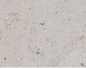 Continental Tiles:Bee Stone:Grey Polished